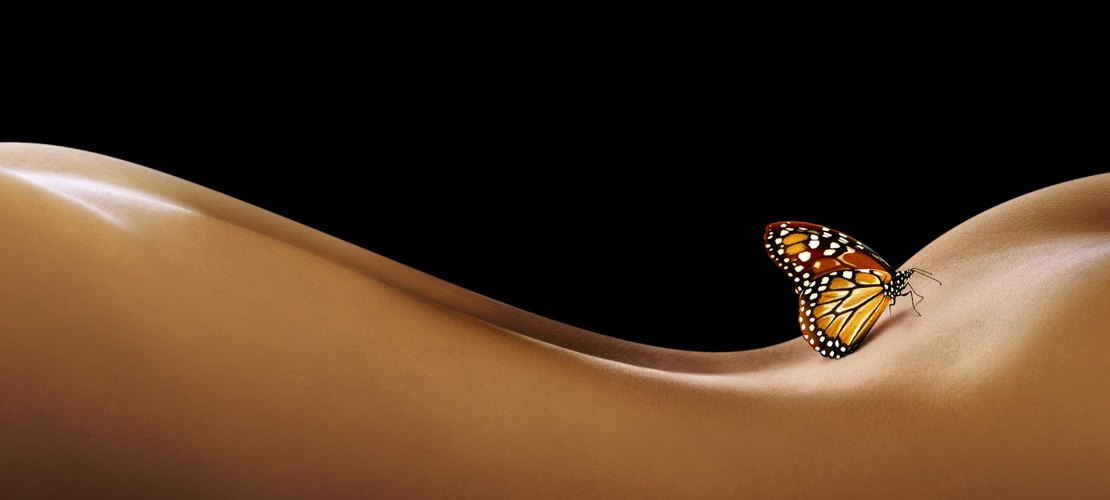 butterflygran